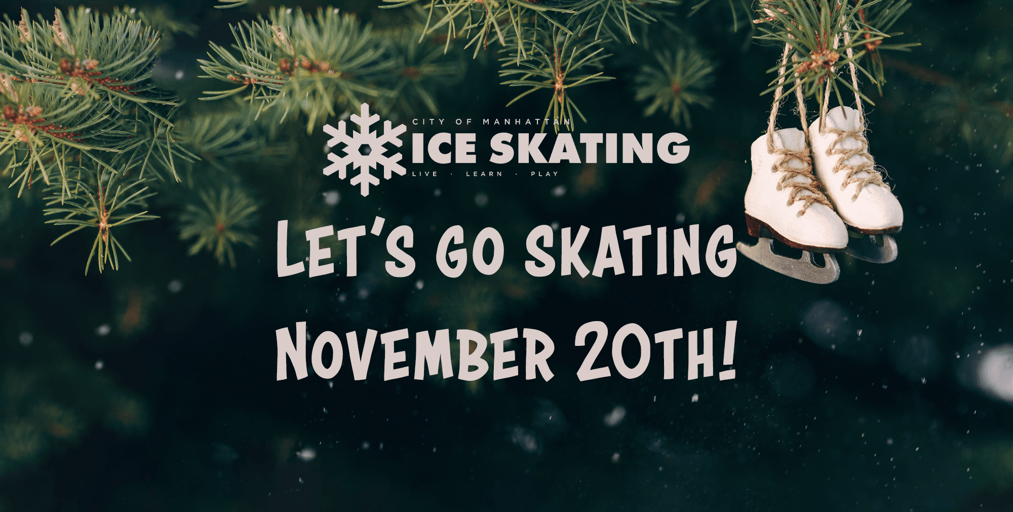 Let's Go Skating